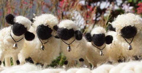 next time you count sheep to fall asleep think of valais blacknose sheep 11 pictures 5
