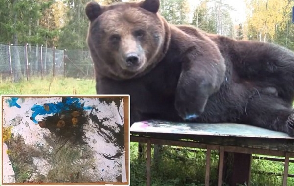 orphaned and amazingly talented animal painter juuso the bear 17 pictures 5