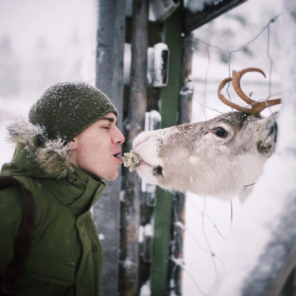 photographer that makes a sweet deal with wild animals 17 pictures 5