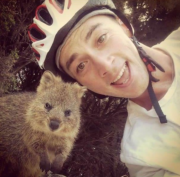quokka selfies are definitely the most adorable new trend in australia 15 pics 9