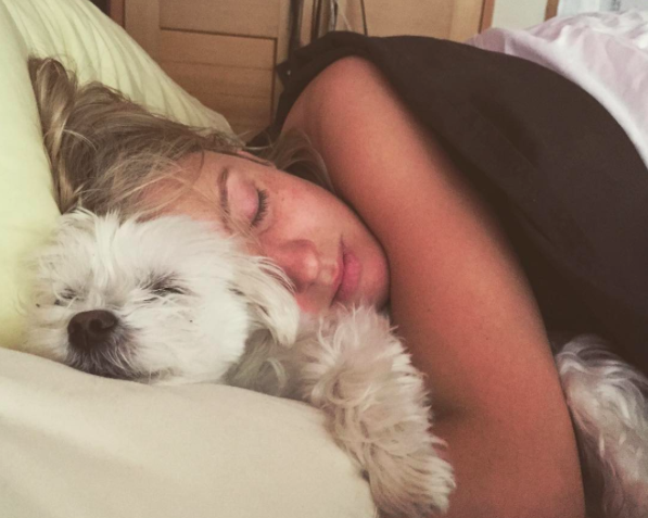 sleeping with your pet yes or no 17 pictures 1