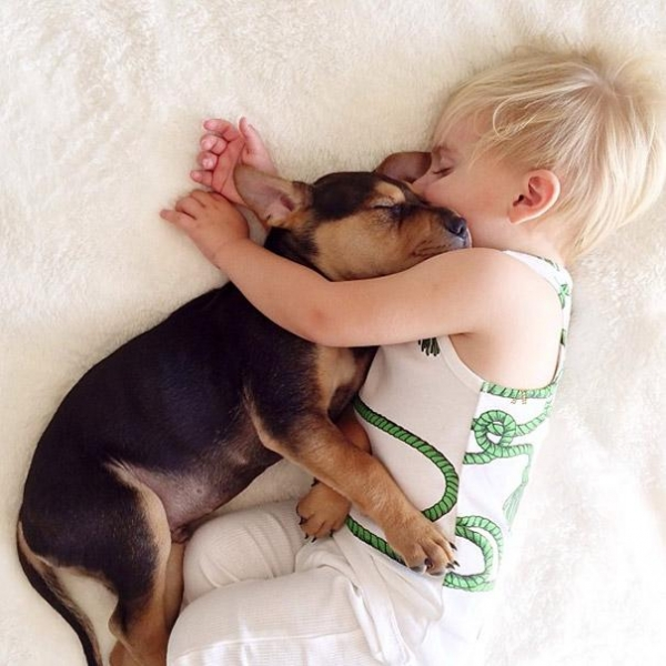 sleeping with your pet yes or no 17 pictures 3