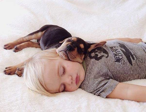 sleeping with your pet yes or no 17 pictures 4