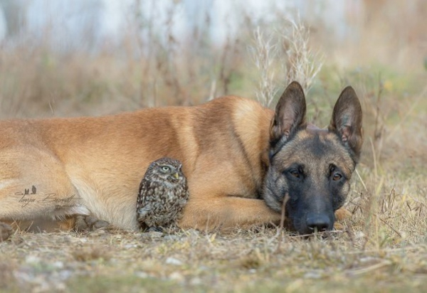 tanja brandt and her unlikely models 10 pictures 1