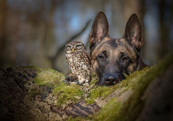 tanja brandt and her unlikely models 10 pictures 10