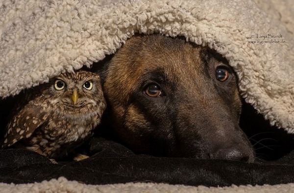 tanja brandt and her unlikely models 10 pictures 2