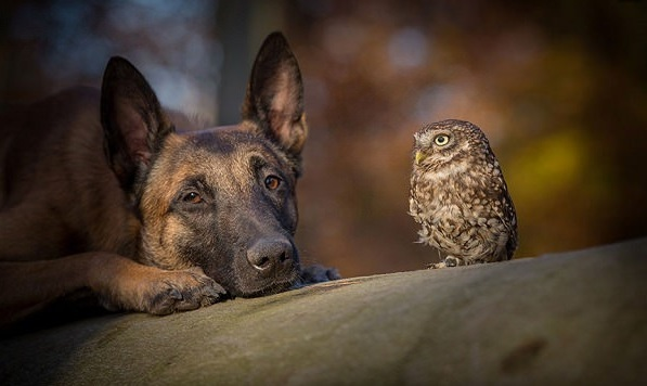tanja brandt and her unlikely models 10 pictures 4