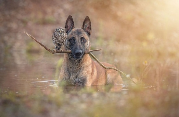 tanja brandt and her unlikely models 10 pictures 5