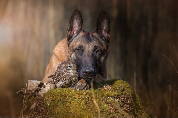 tanja brandt and her unlikely models 10 pictures 6