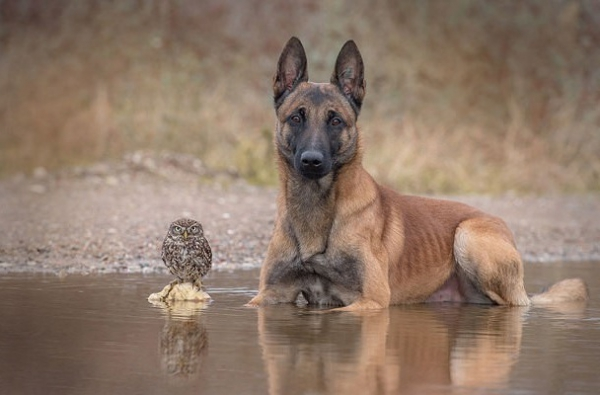 tanja brandt and her unlikely models 10 pictures 7