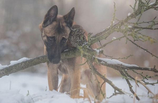 tanja brandt and her unlikely models 10 pictures 8