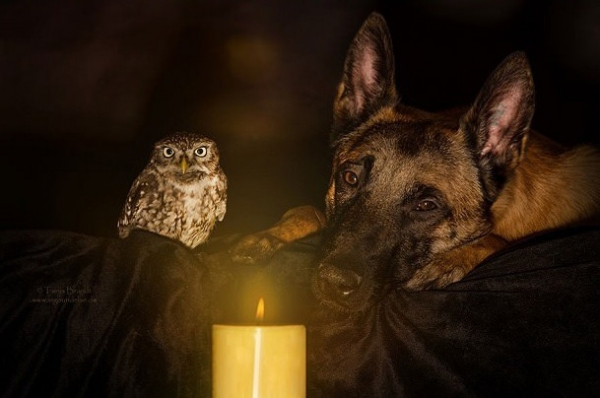 tanja brandt and her unlikely models 10 pictures 9