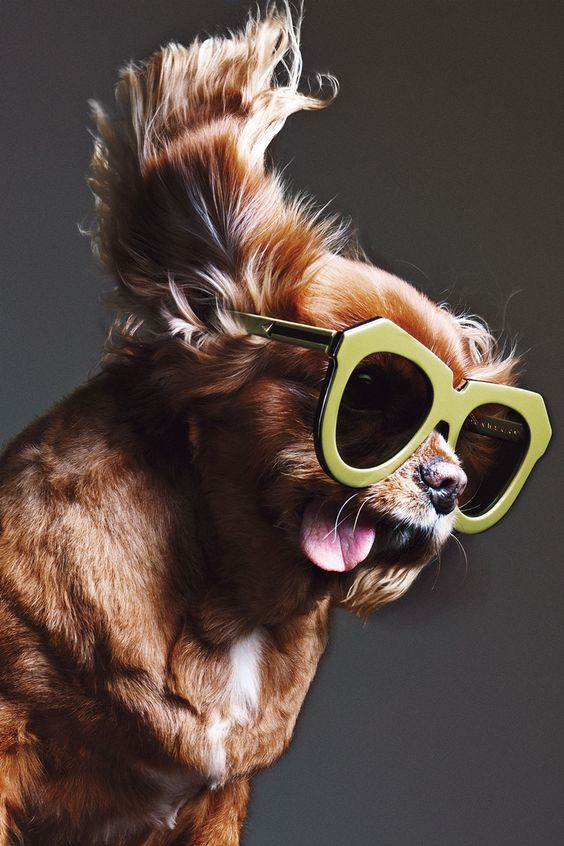 these adorable little ones are definitely up with the new trends  19 pictures 6