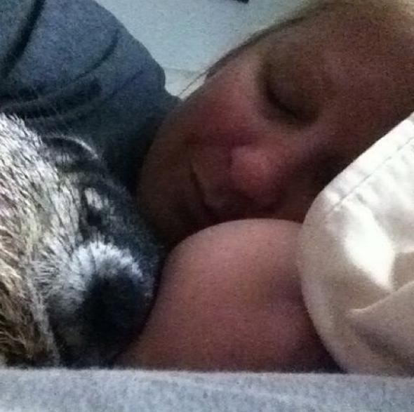 this story of a blind snuggly woodchuck will brighten your day 10 pictures 2