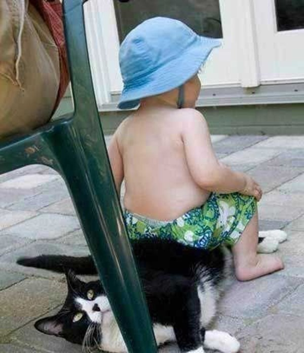 toddlers pets adorable combinations 10 pictures 3