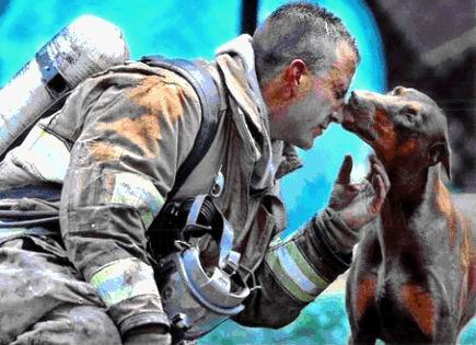 true display of compassion and self sacrifice 3