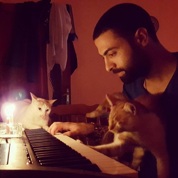 when a pianist saves cats from the streets magic happens 9 pictures 1 video 1