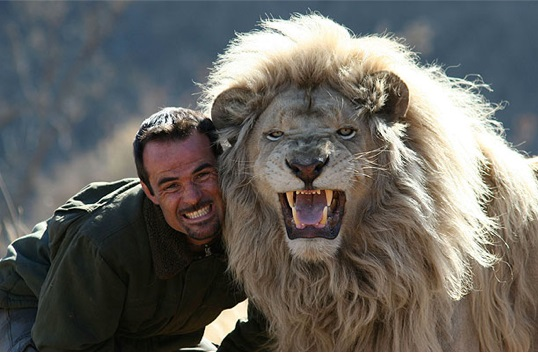 when work becomes pleasure 18 pics of lion whisperer from south africa 1