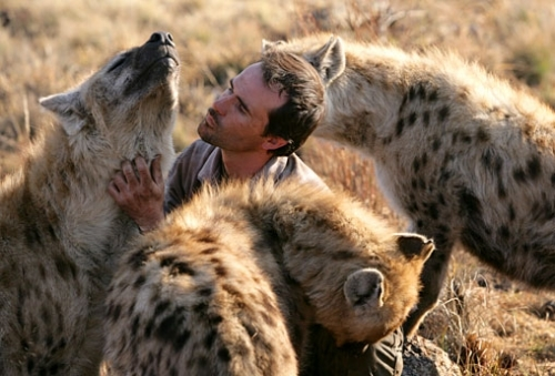 when work becomes pleasure 18 pics of lion whisperer from south africa 17