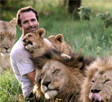 when work becomes pleasure 18 pics of lion whisperer from south africa 5