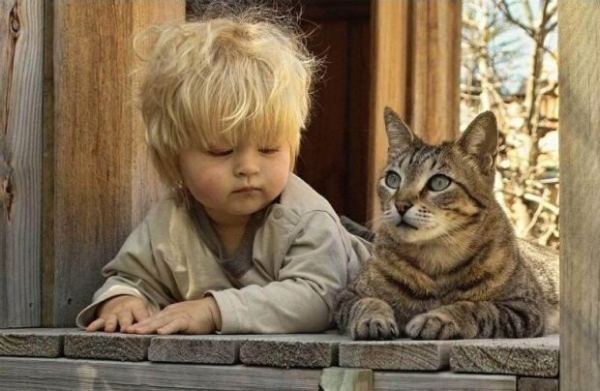 why should your child grow up with a pet 10 pictures 10