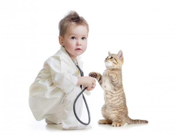 why should your child grow up with a pet 10 pictures 8