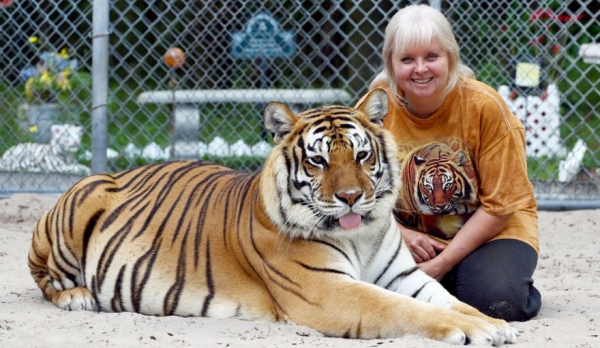women from orlando sharing her backyard two bengal tigers 11 pics 1 video 3
