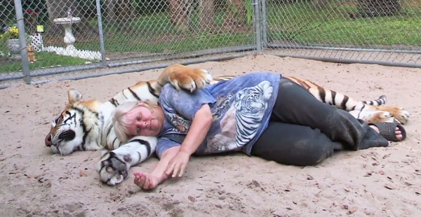 women from orlando sharing her backyard two bengal tigers 11 pics 1 video 4