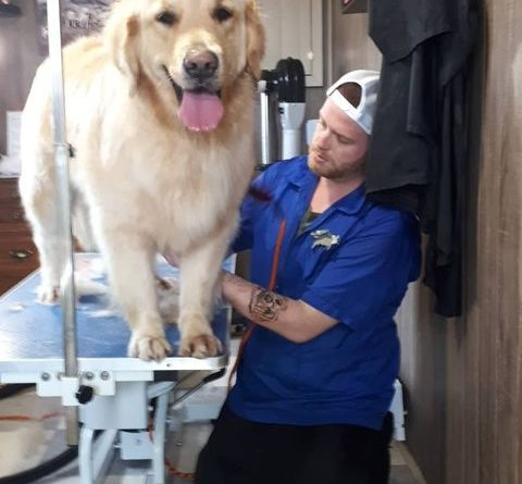 This dog loves grooming. How to trim dog's nails with enjoyment :)